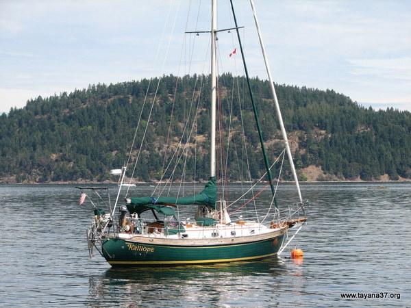 TY 37 anchored.jpg